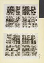 GFA 11/561111-561112: Muster von angeschnittenen Gusstrauben