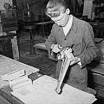 GFA 17/551005.6: Carpenter apprentice
